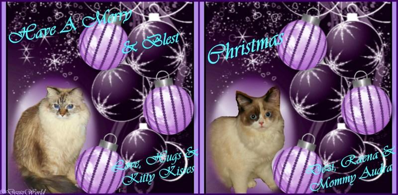dw-christmas-card-purple