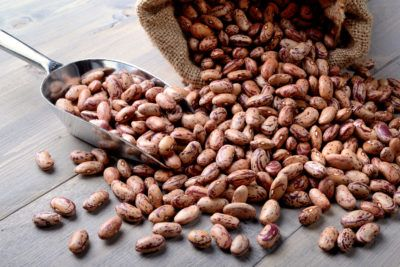 High Plant-Based Protein Diet: Beans