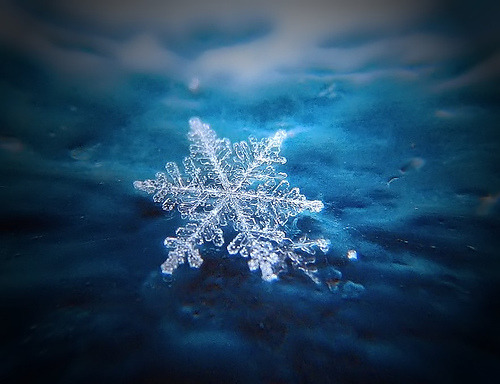 "super macro shot of a snowflake <3!! as the photographer states: ""yes they're real"""