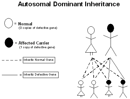 autosomal_dominant_inheritance