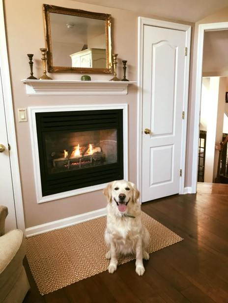 Q posing in front of fireplace