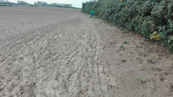 Man glaub es kaum, da ist ein Weg. Jedenfalls unter dem Sand, den der Sturm da hingestreut hat.