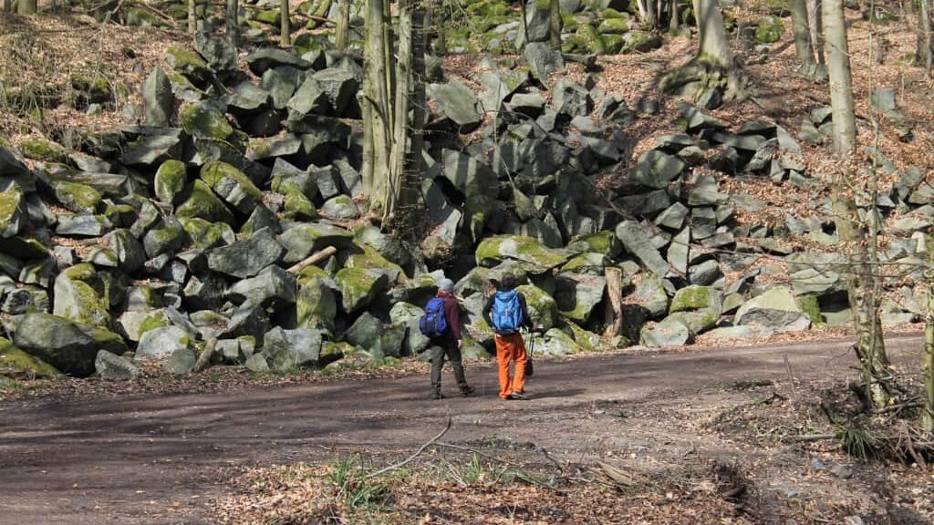 Odenwald_Unterwegs im Felsenmeer