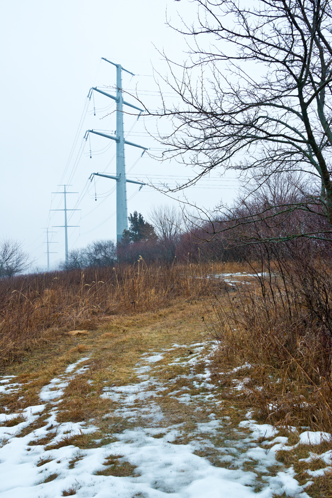 Transmission Line Power Poles in the Mist
