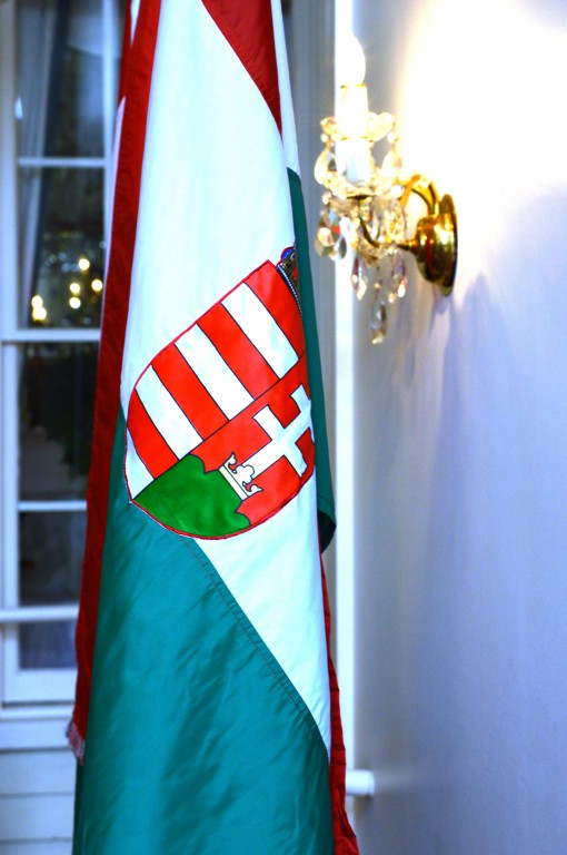 Hungarian Ball 173 Carlyle House Historic Downtown Norcross
