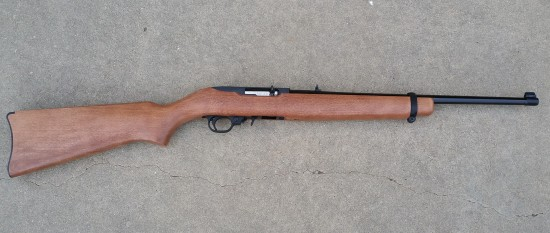 Ruger, 22LR, 10/22, survival rifle, project, build,