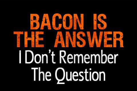 bacon-is-the-answer-4