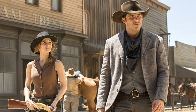 Image result for westworld the stray