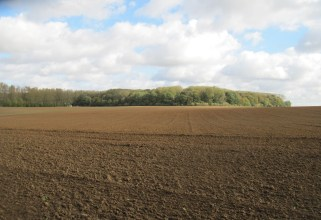 The view from the centre of the advance of the 17th Manchesters on 9th July 1916