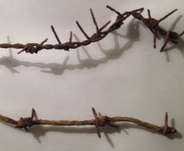British (Top) and German (Bottom) Barbed wire from Somme Battlefield. Thanks to Pete at Ortago View, Flers.