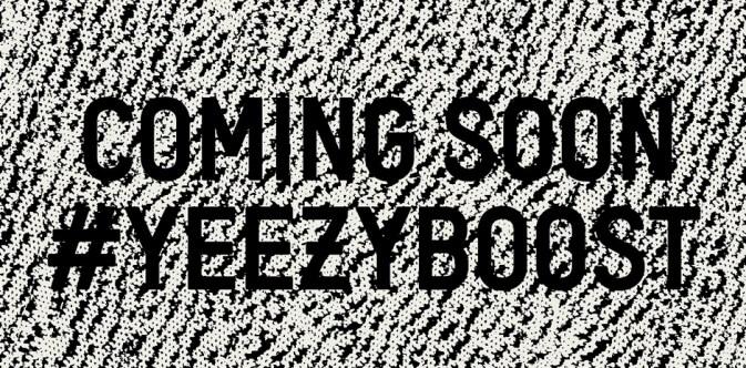 Adidas Yeezy Boost 350_111