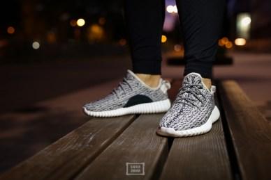 Adidas Yeezy Boost 350_39