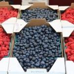 Mansfield Farmers Markets In Full Swing
