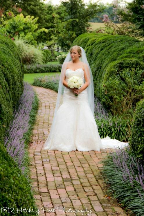 Bridal Portraits-72