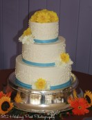 Pool blue with piping cake