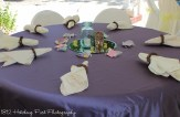 Antique Lilac with blue mason jars and grapevine napkin rings