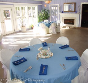 Carolina blue overlay with Marine blue napkins