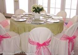 Sage green with sheer hot pink chair sashes