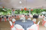Decorations for your event