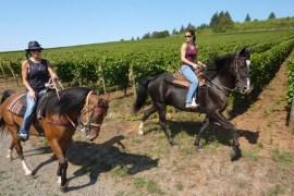 Eqestrian_Wine_Tours_photo_by_Sarah_Hahn