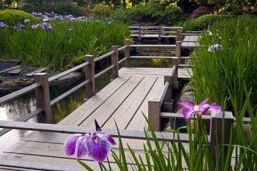 portland japanese gardens, portland gardens, Sadafumi Uchiyama