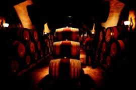2010-Autumn-Oregon-Travel-Wine-Willamette-Valley-Trisaetum-cellar-French-oak-barrels