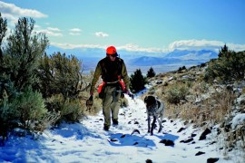 2010-Autumn-Southeastern-Oregon-Travel-Outdoors-Pueblo-Mountains-Gary-Unze-dog-chukar-hunting