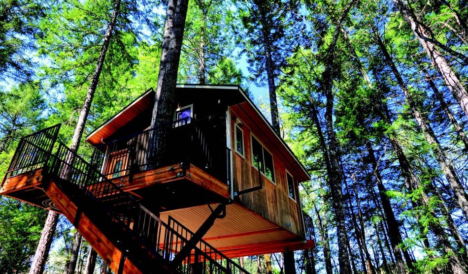 Treehouse Hotel In Oregon Part - 26: 1859 Oregonu0027s Magazine