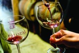 2011-Winter-Southern-Oregon-Travel-Outdoors-Wine-Roseburg-Reustle-Prayer-Rock-Vineyard-wine-tasting