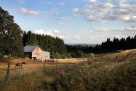 Aumsville-Barn_Don-Anderson_630x400