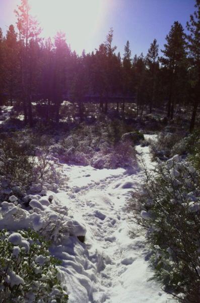 2012-december-1859-central-oregon-bend-outdoor-blog-Deschutes-River-Trail-December