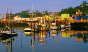 2012-winter-oregon-coast-outdoors-newport-fishing-boats-harbor