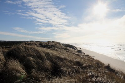 2013-march-april-1859-magazine-oregon-coast-road-reconsidered-highway-126-oregon-dunes-with-sunburst