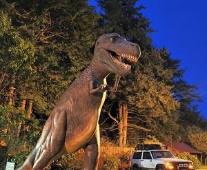1859_PrehistoricGarden_GaryRandell_Sept_Oct_2014_1