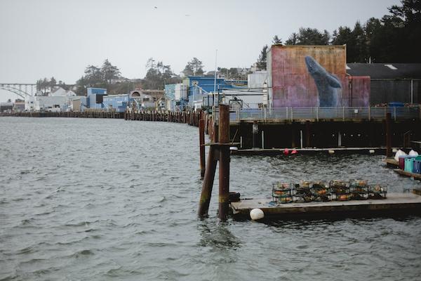 newport, coast, renascent photography