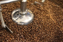 oregon coffee, tailored coffee roasters, eugene oregon, willamette valley, srushti kamat