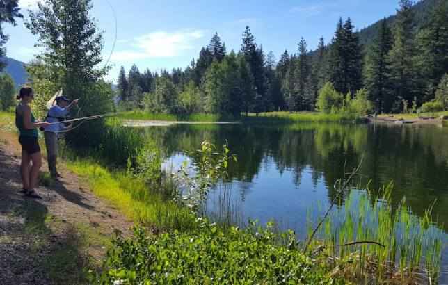 Freestone Lake