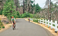 The Historic Columbia River Highway State Trail allows bikers and hikers to take to the old highway.