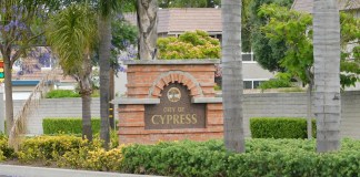 Eight candidates apply to fill vacant Cypress City Council seat