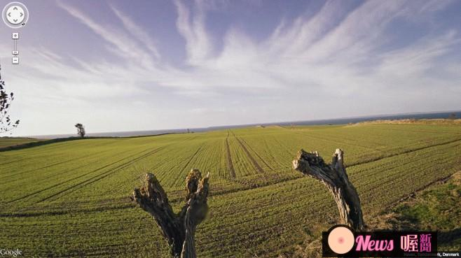 fields-658x369