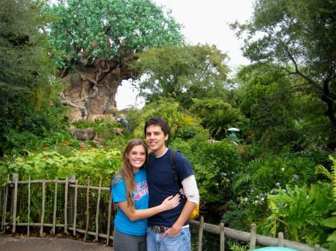 Tree of Life 2008