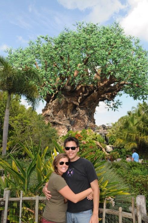 Tree of Life 2012