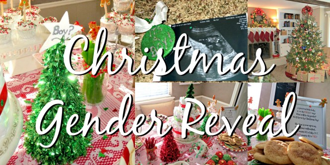 Christmas Gender Reveal Ideas.Gender Reveal Ideas Hoots Of A Night Al