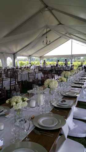 4 Panels of White Tulle, with Twinkle Lights Inside, 1 Large Brass Chandelier