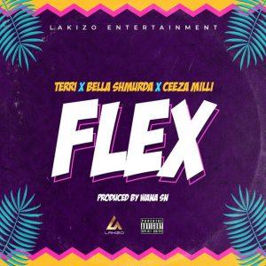 Terri Ft. Bella Shmurda & Ceeza Milli – Flex