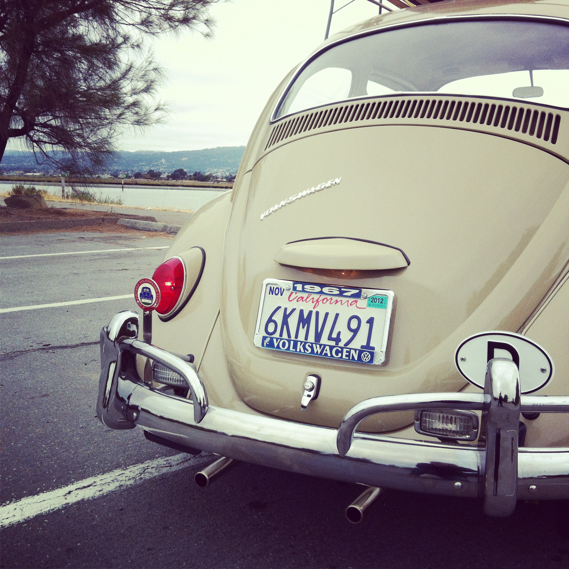 Vw Bug Engine Case Sealant: One Year Only Parts