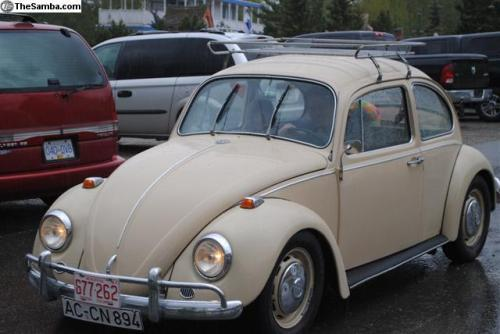 FOR SALE — L620 Savanna Beige '67 Beetle