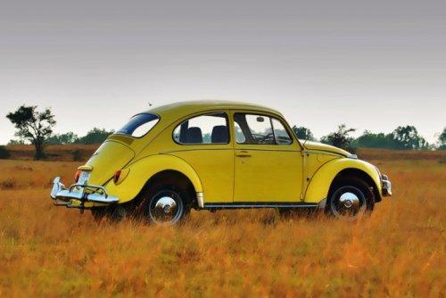 Featured '67 Beetle — Pavan Kadan