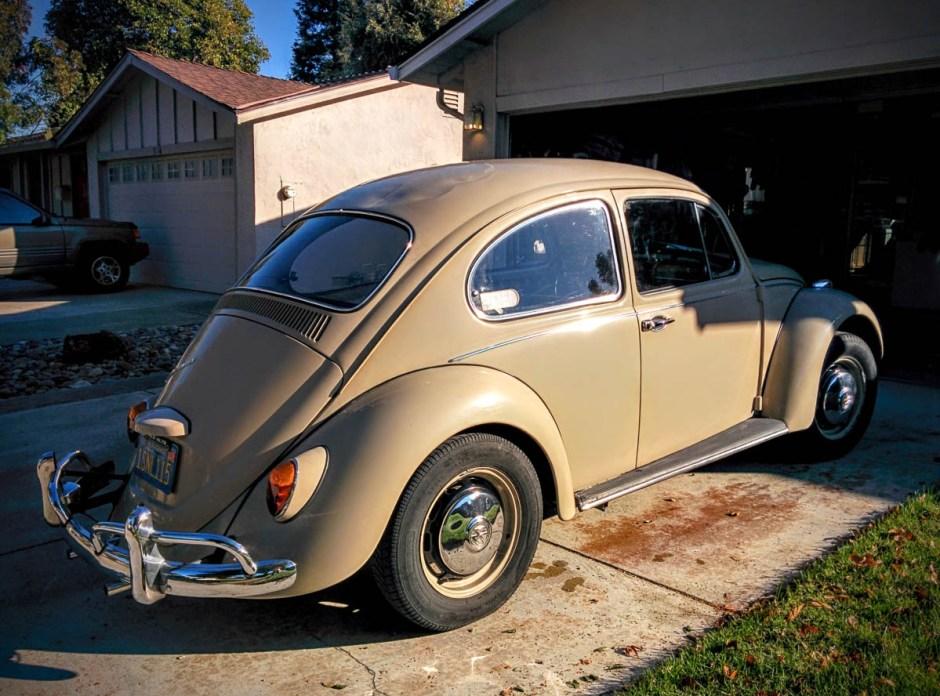 1967_bug-4