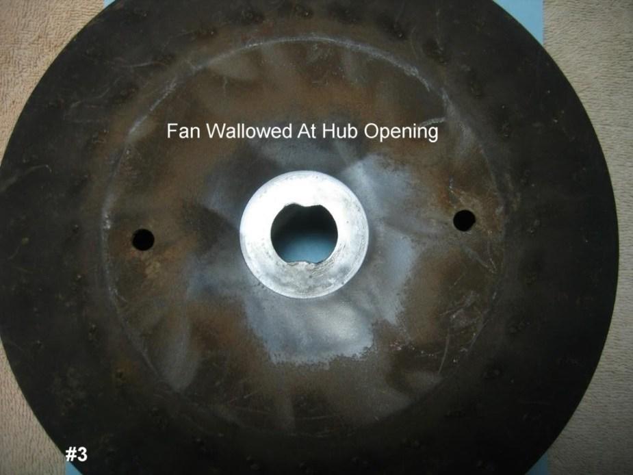 FanSkinnyGermanWallowed#b